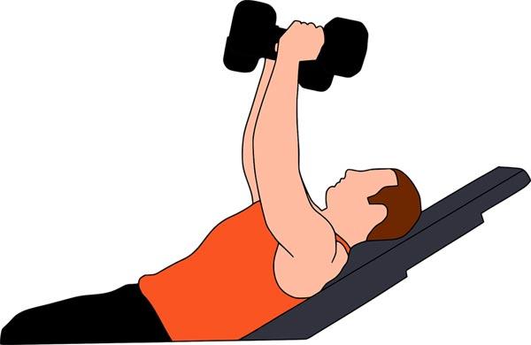Kreatin Bodybuilding